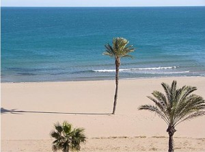 Top five summer destinations to learn spanish - imagen by see-article1